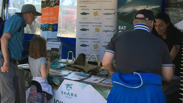 Shark Trust Promoting Sustainable Fisheries at Fish Festival